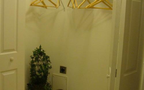 Utility Room closet